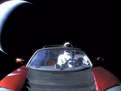 Is Elon Musk Bipolar